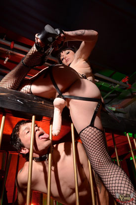 t danielle foxxx caged 02 Caged Heat With Post Op Transsexual Danielle Foxxx!