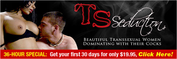 tsseduction banner Hardcore Action With The Sexy Shemales Of TS Seduction!
